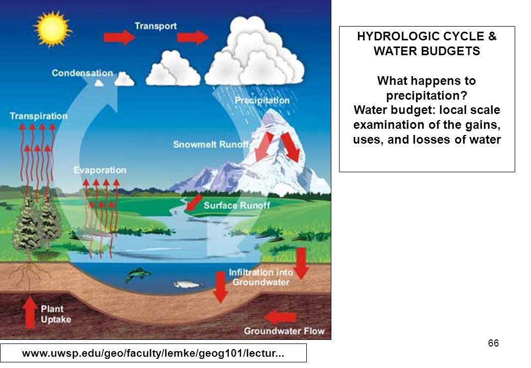 66 HYDROLOGIC CYCLE & WATER BUDGETS What happens to precipitation.
