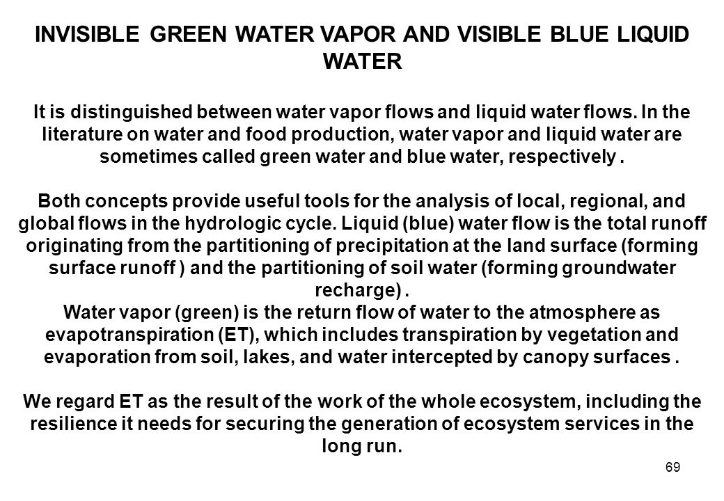 69 INVISIBLE GREEN WATER VAPOR AND VISIBLE BLUE LIQUID WATER It is distinguished between water vapor flows and liquid water flows.