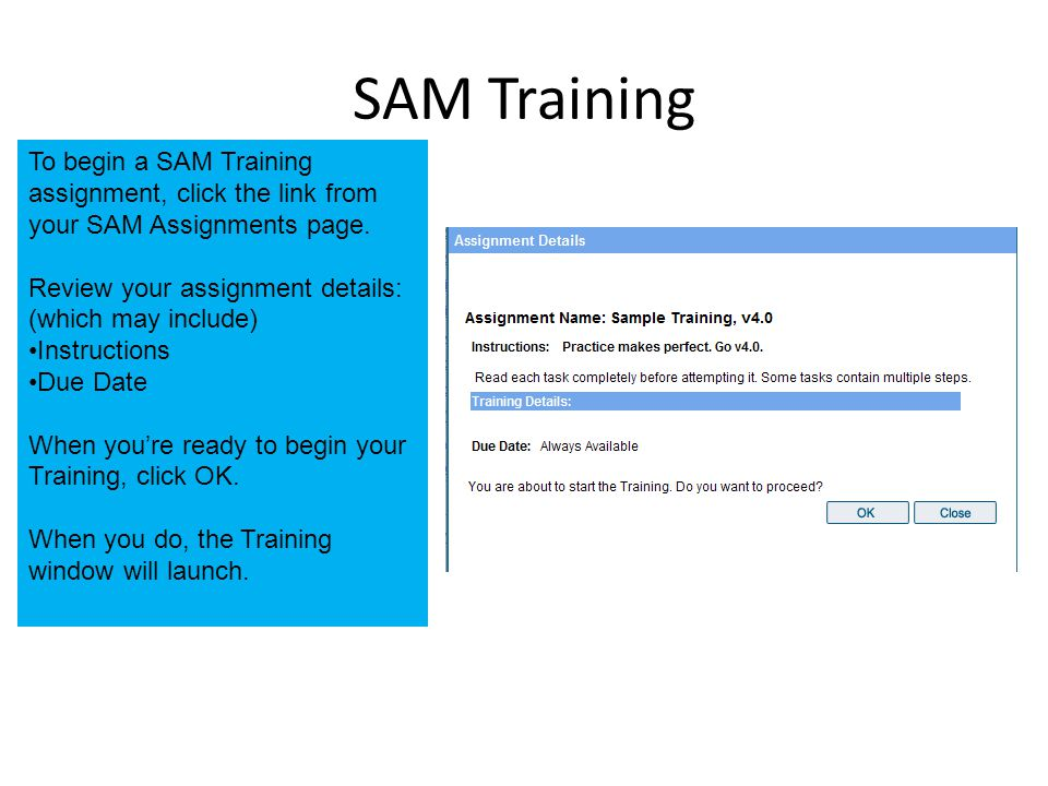 SAM Training To begin a SAM Training assignment, click the link from your SAM Assignments page.