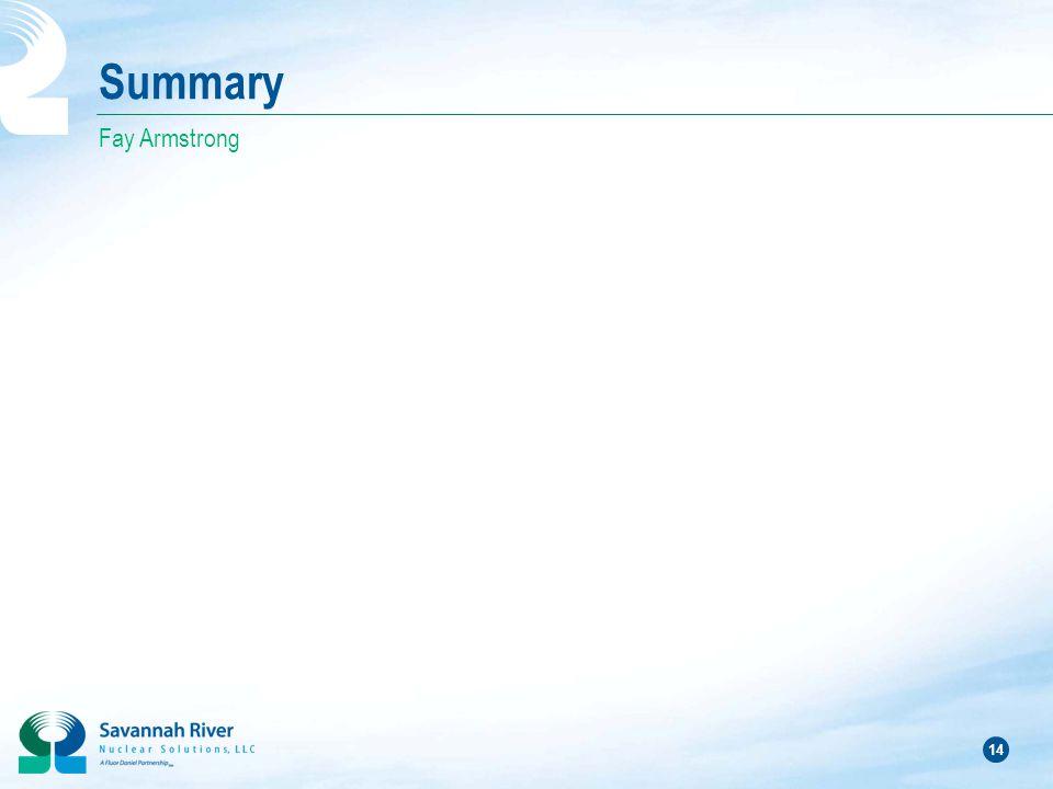 14 Summary Fay Armstrong