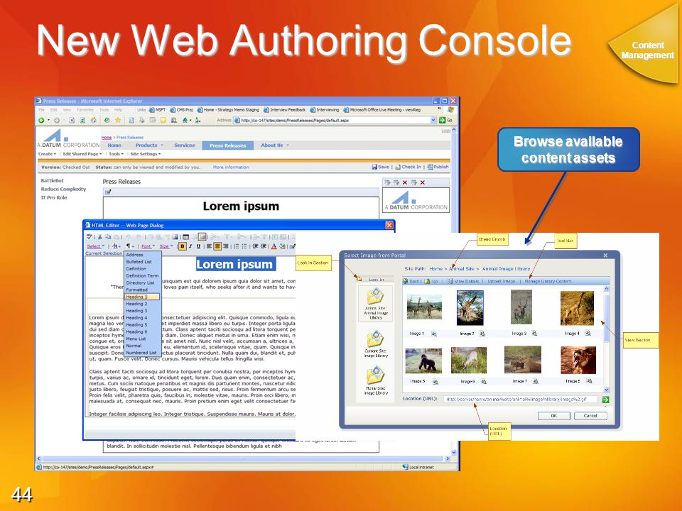 44 New Web Authoring Console ContentManagement Browse available content assets