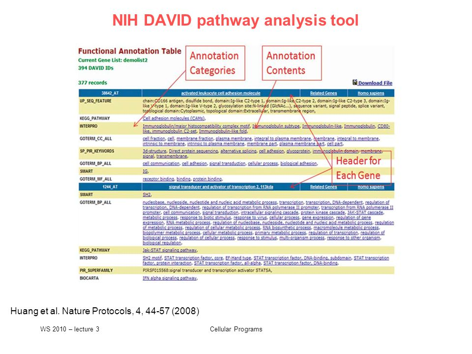 Cellular Programs NIH DAVID pathway analysis tool Huang et al.