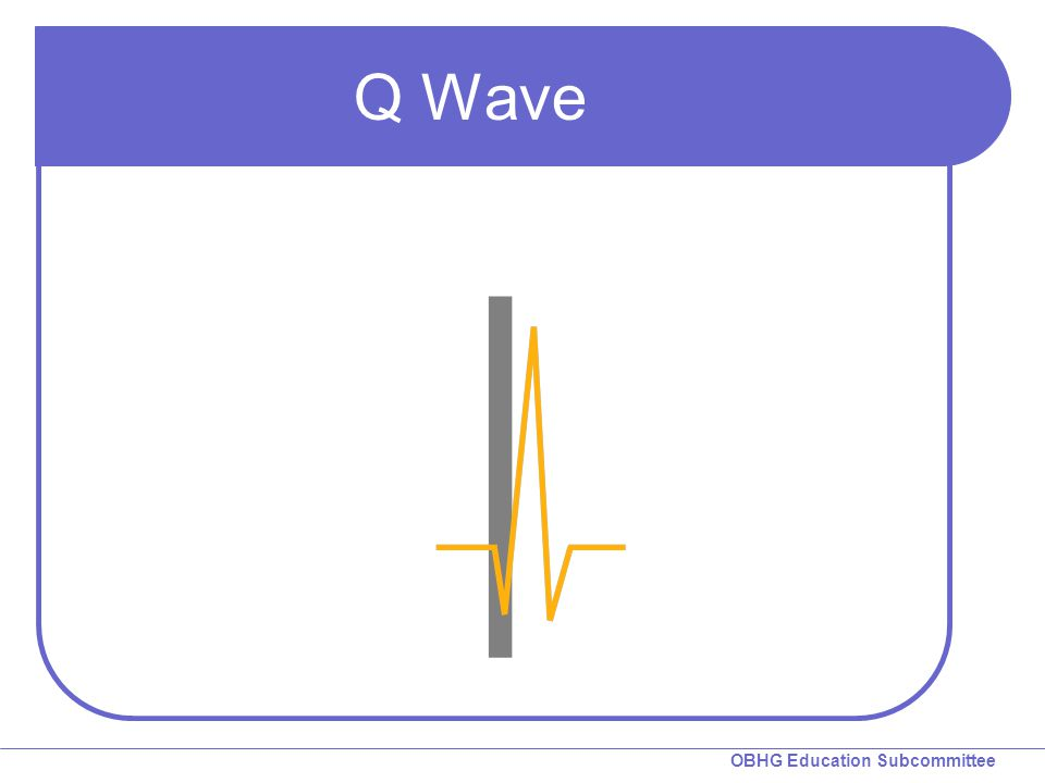 OBHG Education Subcommittee Q Wave
