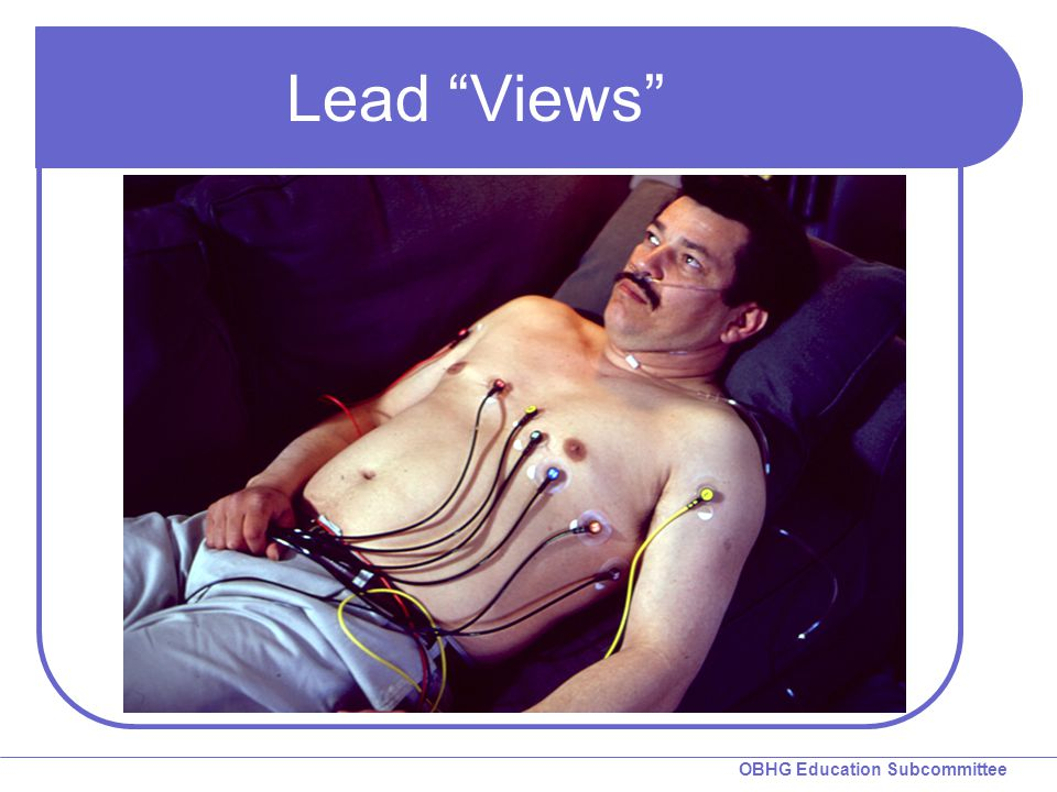 "OBHG Education Subcommittee Lead ""Views"""