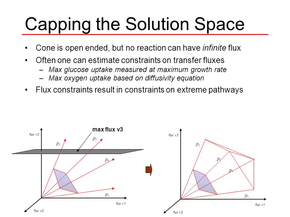 Capping the Solution Space Cone is open ended, but no reaction can have infinite flux Often one can estimate constraints on transfer fluxes –Max glucose uptake measured at maximum growth rate –Max oxygen uptake based on diffusivity equation Flux constraints result in constraints on extreme pathways p1 p1 p2 p2 p3 p3 p4 p4 flux v1 flux v2 flux v3 p1 p1 p2 p2 p3 p3 p4 p4 max flux v3 flux v1 flux v2 flux v3