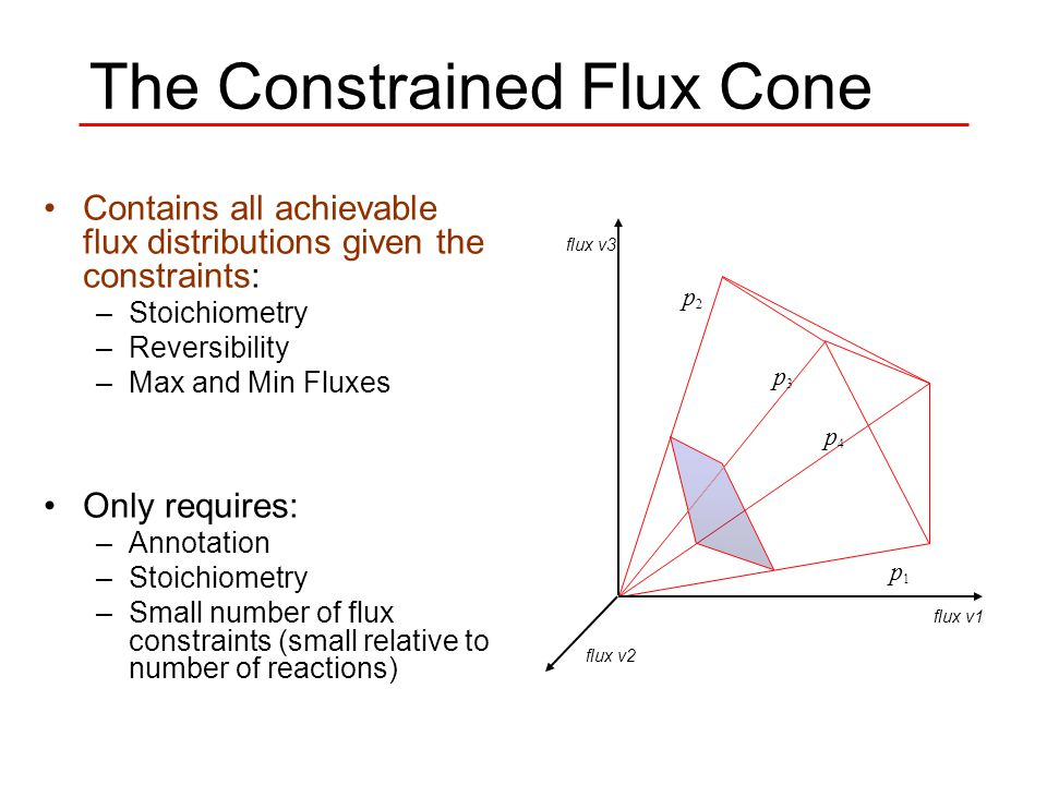 The Constrained Flux Cone p1 p1 p2 p2 p3 p3 p4 p4 flux v1 flux v2 flux v3 Contains all achievable flux distributions given the constraints: –Stoichiometry –Reversibility –Max and Min Fluxes Only requires: –Annotation –Stoichiometry –Small number of flux constraints (small relative to number of reactions)