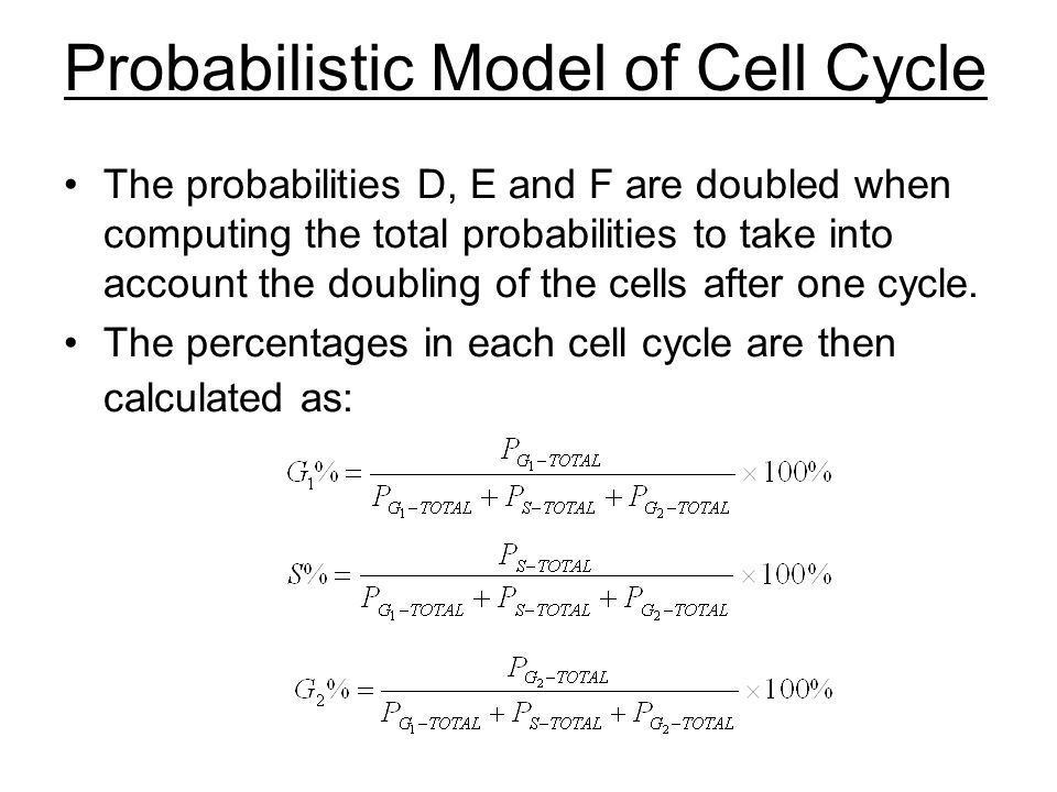 Probabilistic Model of Cell Cycle The probabilities D, E and F are doubled when computing the total probabilities to take into account the doubling of the cells after one cycle.