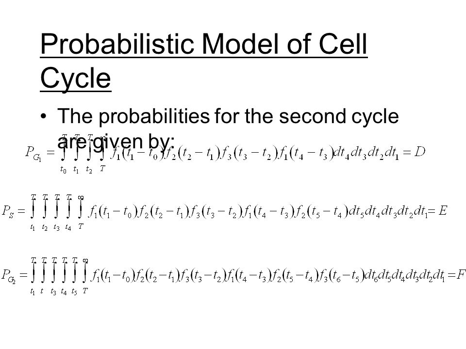 Probabilistic Model of Cell Cycle The probabilities for the second cycle are given by: