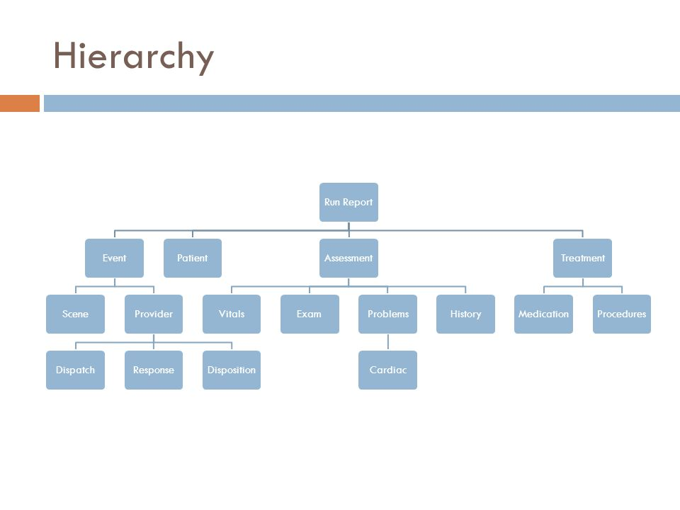 Hierarchy Run ReportEventSceneProviderDispatchResponseDispositionPatientAssessmentVitalsExamProblemsCardiacHistoryTreatmentMedicationProcedures