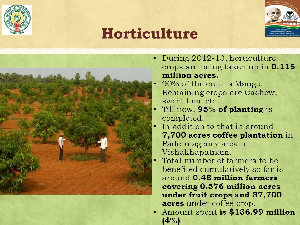 Horticulture ▪ During 2012-13, horticulture crops are being taken up in 0.115 million acres.