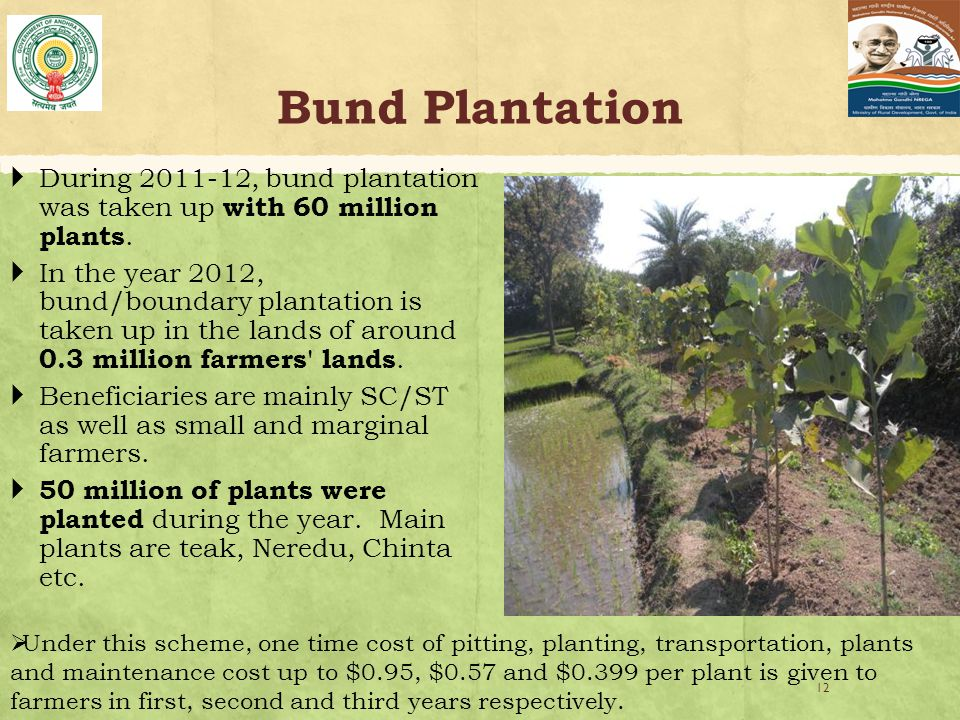 Bund Plantation  During 2011-12, bund plantation was taken up with 60 million plants.