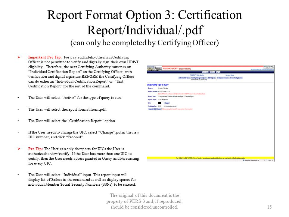 Report Format Option 3: Certification Report/Individual/.pdf (can only be completed by Certifying Officer)  Important Pro Tip: For pay auditability,