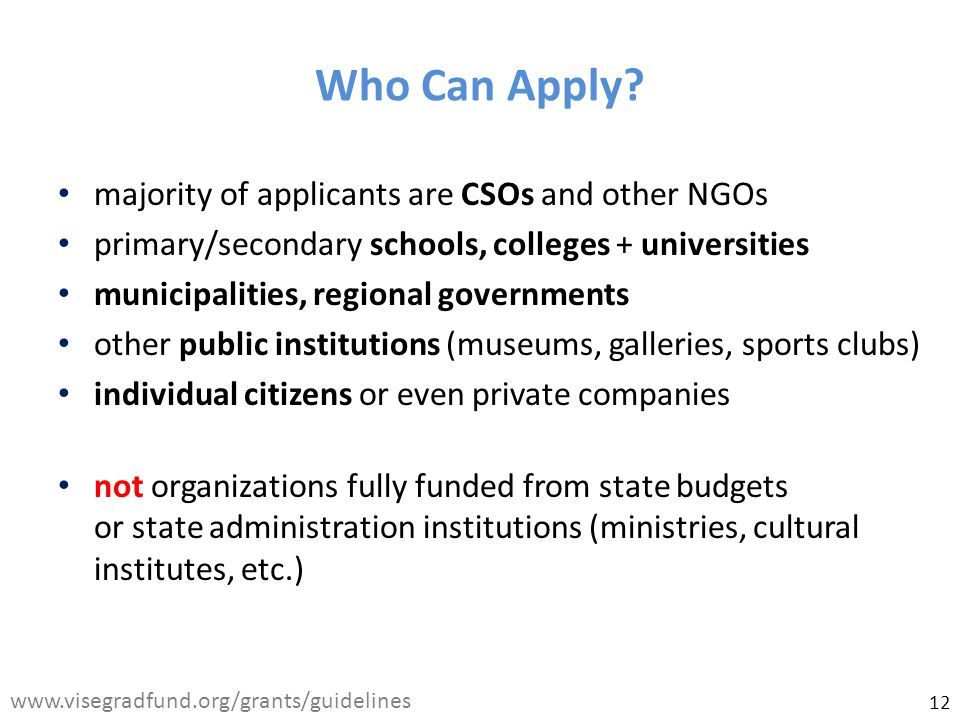 majority of applicants are CSOs and other NGOs primary/secondary schools, colleges + universities municipalities, regional governments other public institutions (museums, galleries, sports clubs) individual citizens or even private companies not organizations fully funded from state budgets or state administration institutions (ministries, cultural institutes, etc.) Who Can Apply.