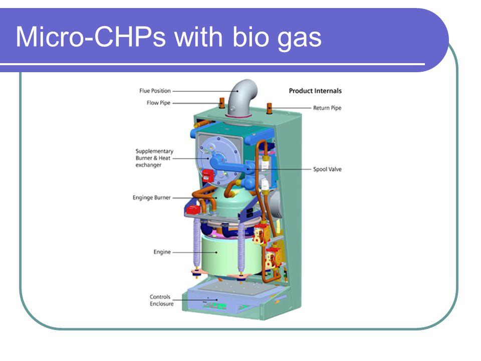 Micro-CHPs with bio gas