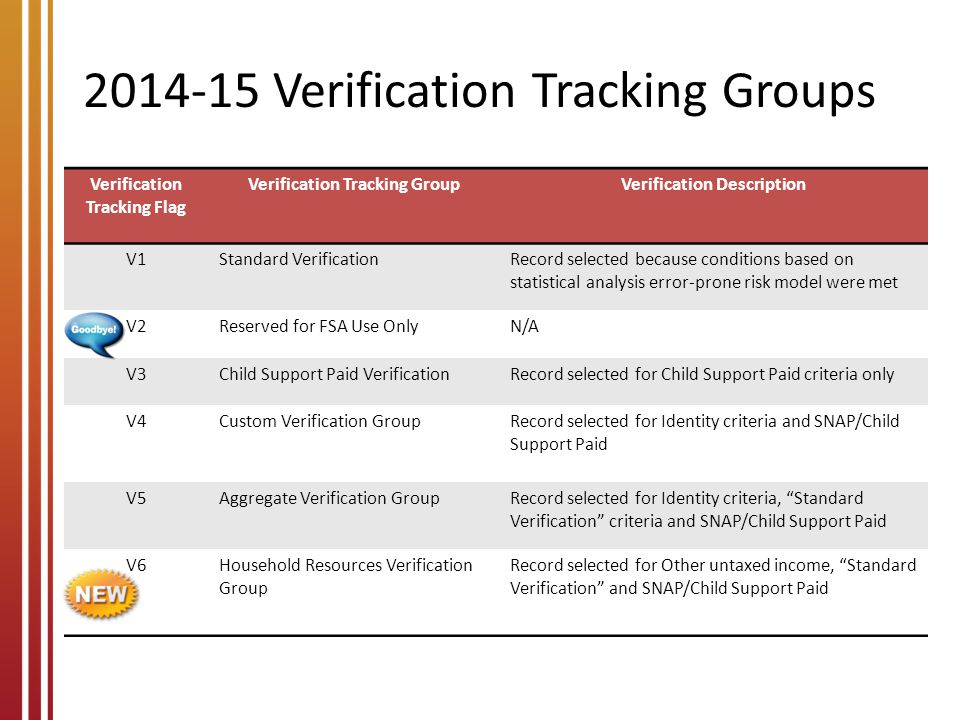 ISIR Verification Flags
