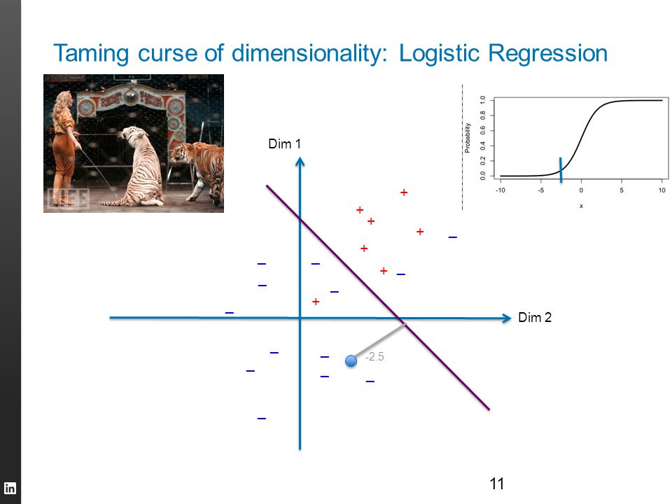 Taming curse of dimensionality: Logistic Regression 11 Dim 2 Dim 1 + + + + + + + _ _ _ _ _ _ _ _ _ _ _ _ _ -2.5