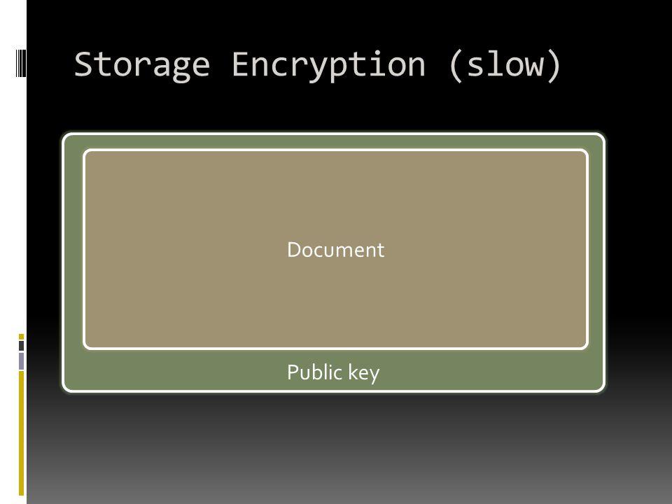 Storage Encryption (slow) Public key Document
