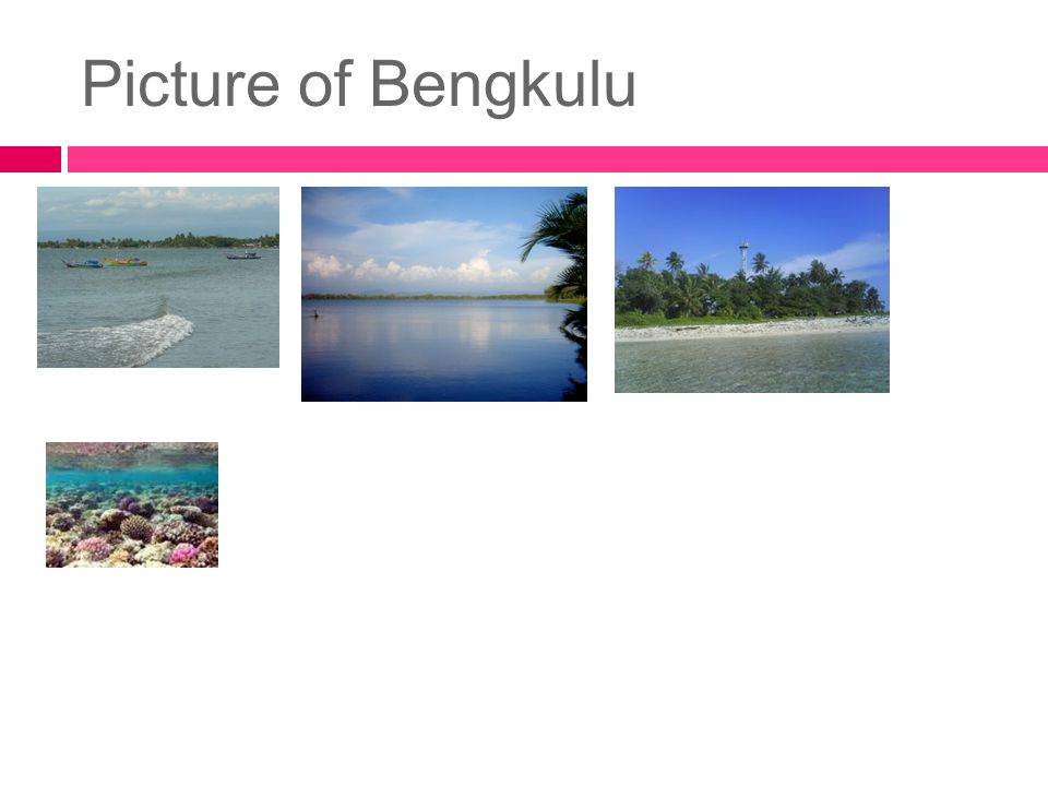 Picture of Bengkulu