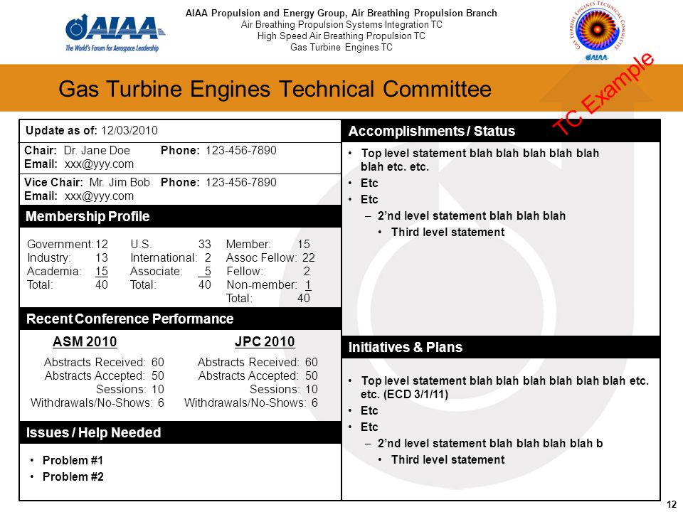 12 Gas Turbine Engines Technical Committee Chair: Dr. Jane DoePhone: 123-456-7890 Email: xxx@yyy.com Vice Chair: Mr. Jim BobPhone: 123-456-7890 Email: