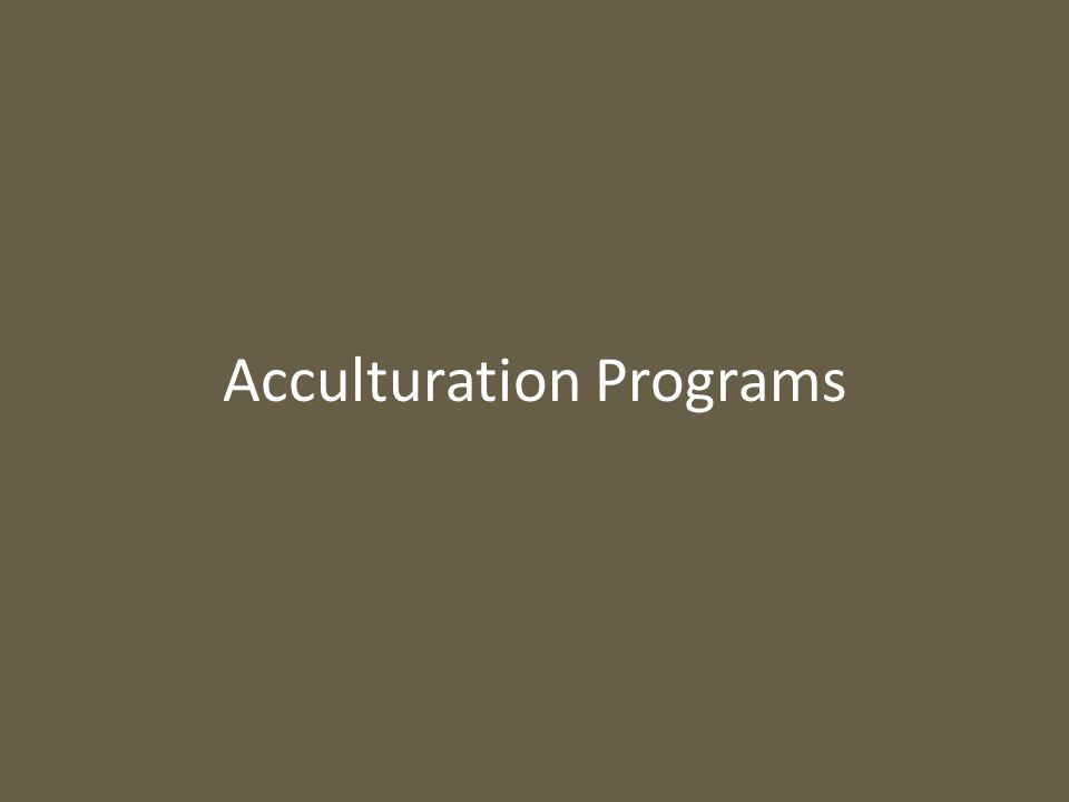 Acculturation Programs