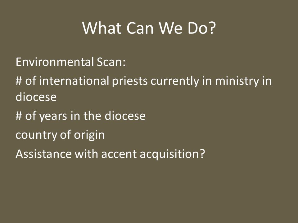 What Can We Do? Environmental Scan: # of international priests currently in ministry in diocese # of years in the diocese country of origin Assistance