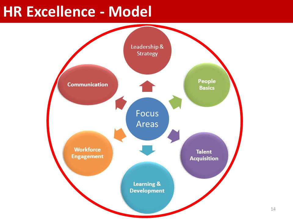 14 HR Excellence - Model Focus Areas Leadership & Strategy People Basics Talent Acquisition Learning & Development Workforce Engagement Communication