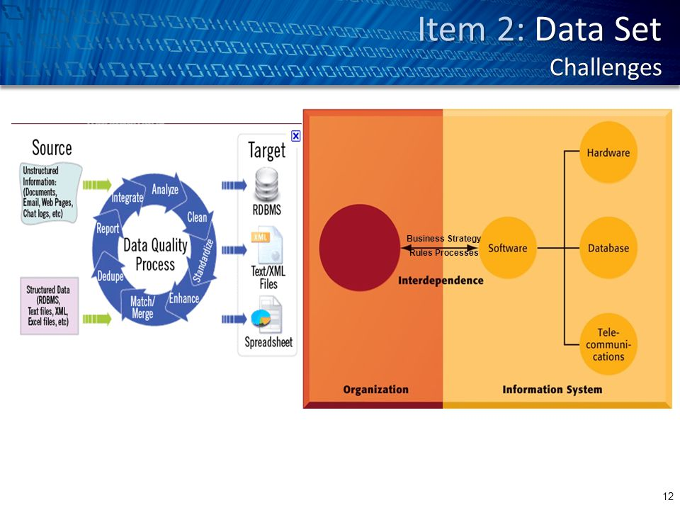 Item 2: Data Set Challenges 12 Business Strategy Rules Processes
