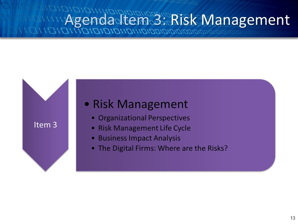 Agenda Item 3: Risk Management 13