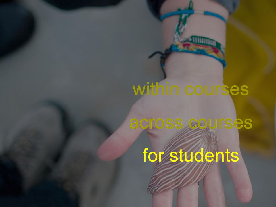 within courses across courses for students within courses across courses for students