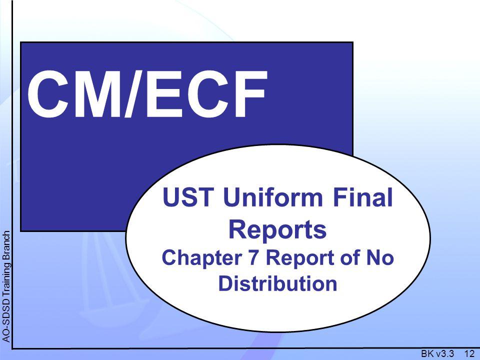 BK v3.3 12 AO-SDSD Training Branch CM/ECF UST Uniform Final Reports Chapter 7 Report of No Distribution