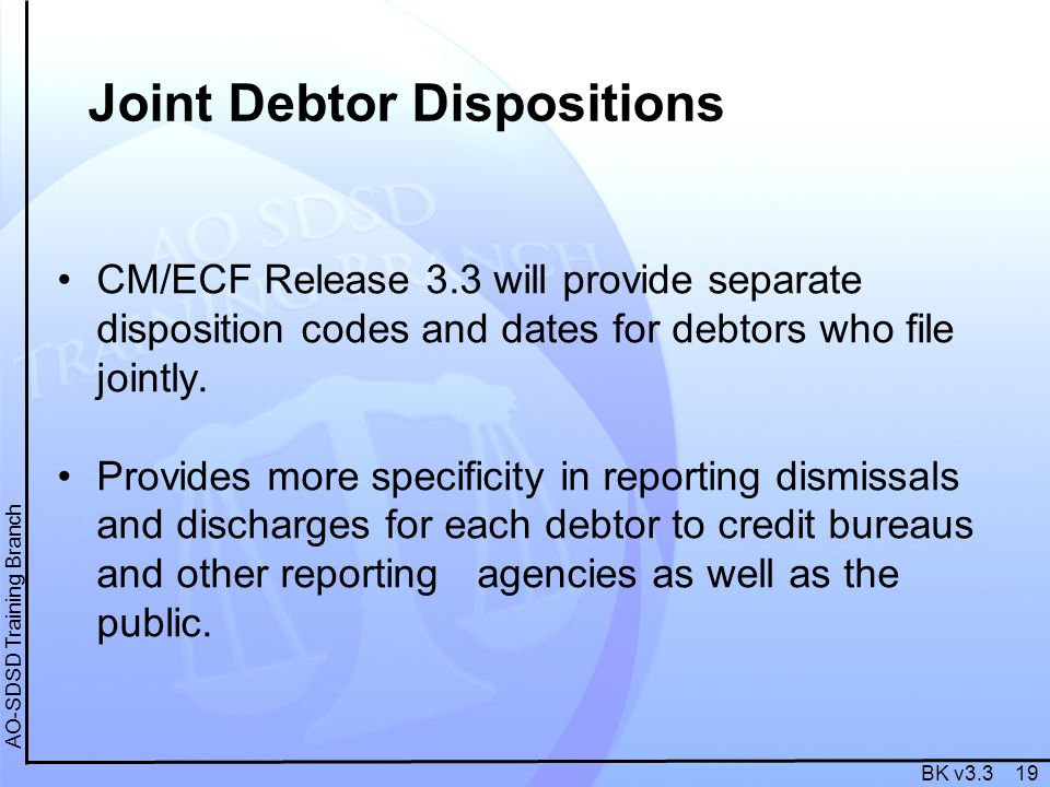 BK v3.3 19 AO-SDSD Training Branch Joint Debtor Dispositions CM/ECF Release 3.3 will provide separate disposition codes and dates for debtors who file jointly.