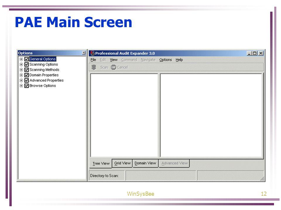 WinSysBee12 PAE Main Screen