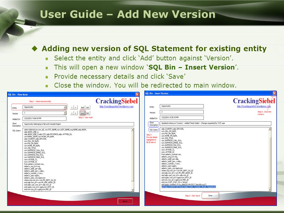  Adding new version of SQL Statement for existing entity Select the entity and click 'Add' button against 'Version'.