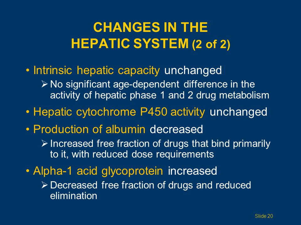 CHANGES IN THE HEPATIC SYSTEM (2 of 2) Intrinsic hepatic capacity unchanged  No significant age-dependent difference in the activity of hepatic phase