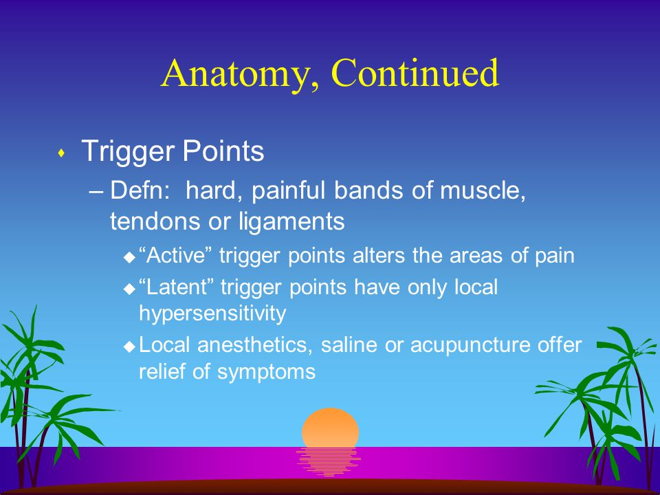 """Anatomy, Continued s Trigger Points –Defn: hard, painful bands of muscle, tendons or ligaments u """"Active"""" trigger points alters the areas of pain u """"L"""