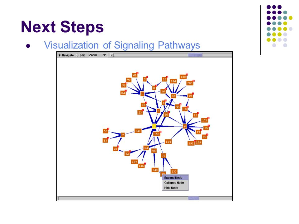 Next Steps Visualization of Signaling Pathways