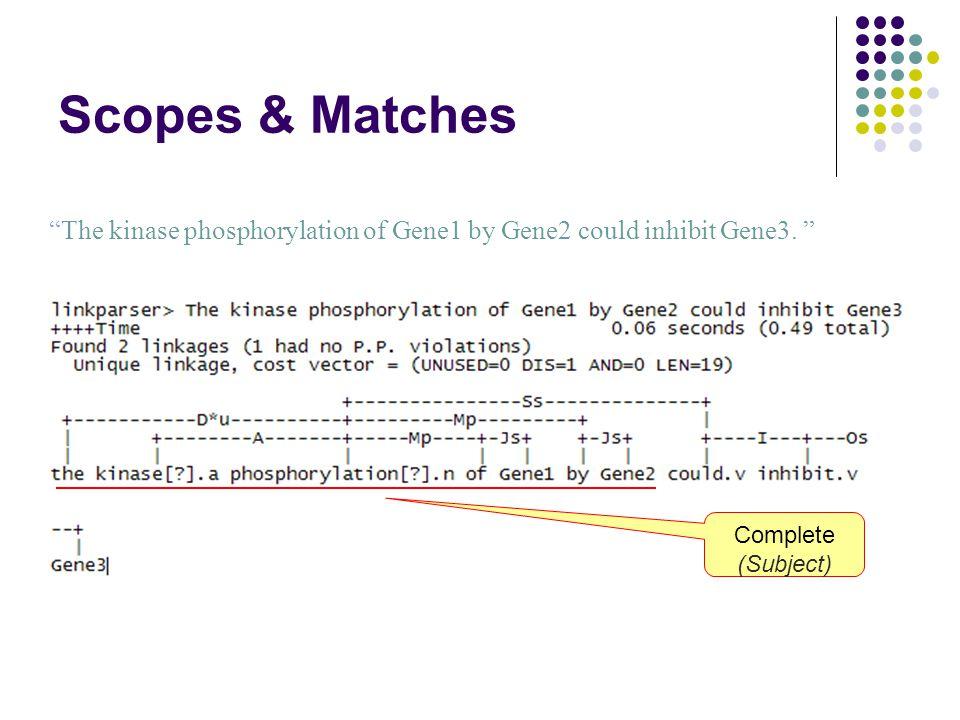 Scopes & Matches The kinase phosphorylation of Gene1 by Gene2 could inhibit Gene3.