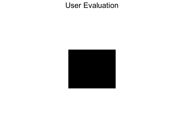 User Evaluation