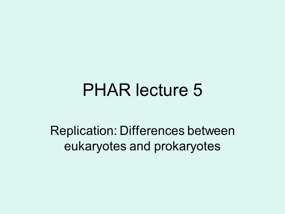 PHAR lecture 5 Replication: Differences between eukaryotes and prokaryotes