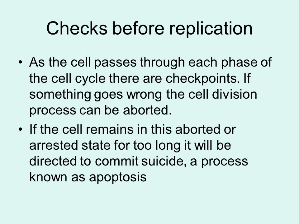 Checks before replication As the cell passes through each phase of the cell cycle there are checkpoints. If something goes wrong the cell division pro