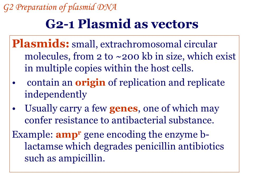 G2 Preparation of plasmid DNA G2-1 Plasmid as vectors G2-2 Plasmid minipreparation G2-3 Alkaline lysis G2-4 Phenol extraction G2-5 Ethanol precipitation G2-6 Cesium chloride gradient (purification) Gene manipulation