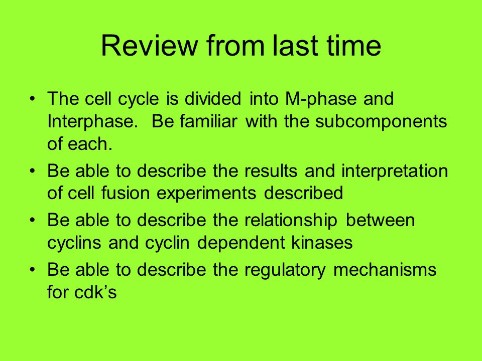 Review from last time The cell cycle is divided into M-phase and Interphase.