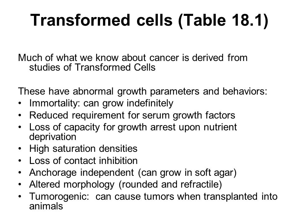 Transformed cells (Table 18.1) Much of what we know about cancer is derived from studies of Transformed Cells These have abnormal growth parameters and behaviors: Immortality: can grow indefinitely Reduced requirement for serum growth factors Loss of capacity for growth arrest upon nutrient deprivation High saturation densities Loss of contact inhibition Anchorage independent (can grow in soft agar) Altered morphology (rounded and refractile) Tumorogenic: can cause tumors when transplanted into animals