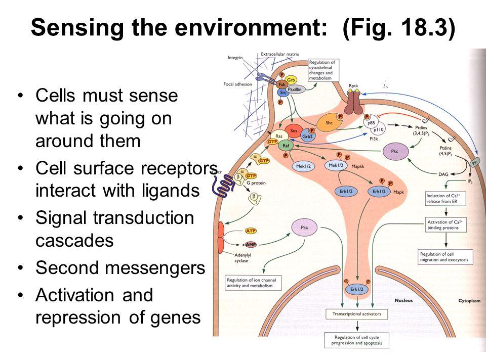 Sensing the environment: (Fig.