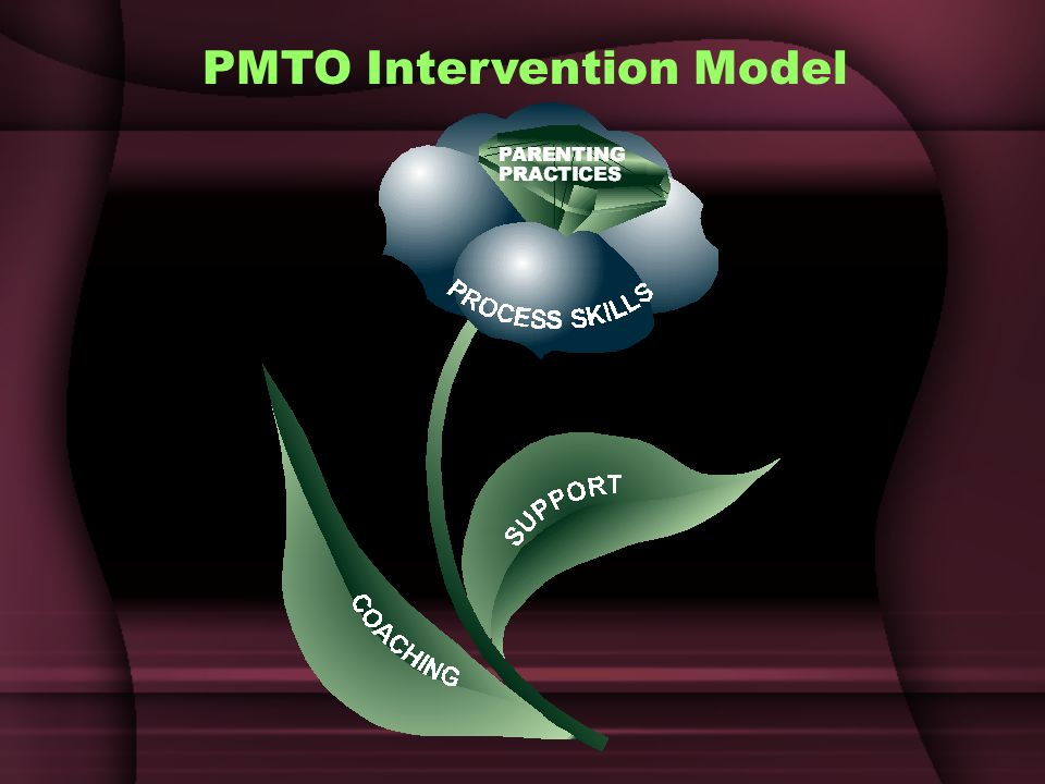 PMTO Intervention Model