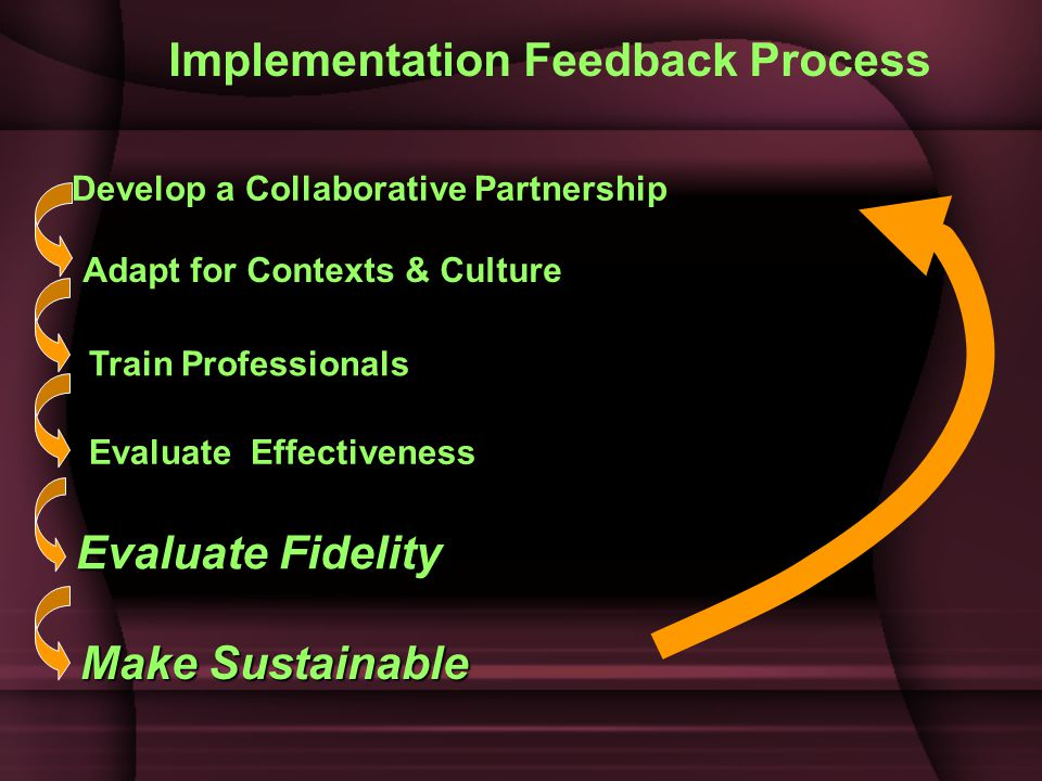 Implementation Feedback Process Develop a Collaborative Partnership Adapt for Contexts & Culture Train Professionals Evaluate Effectiveness Evaluate Fidelity Make Sustainable