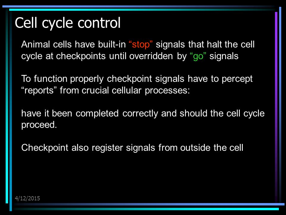 4/12/2015 Cell cycle control Animal cells have built-in stop signals that halt the cell cycle at checkpoints until overridden by go signals To function properly checkpoint signals have to percept reports from crucial cellular processes: have it been completed correctly and should the cell cycle proceed.