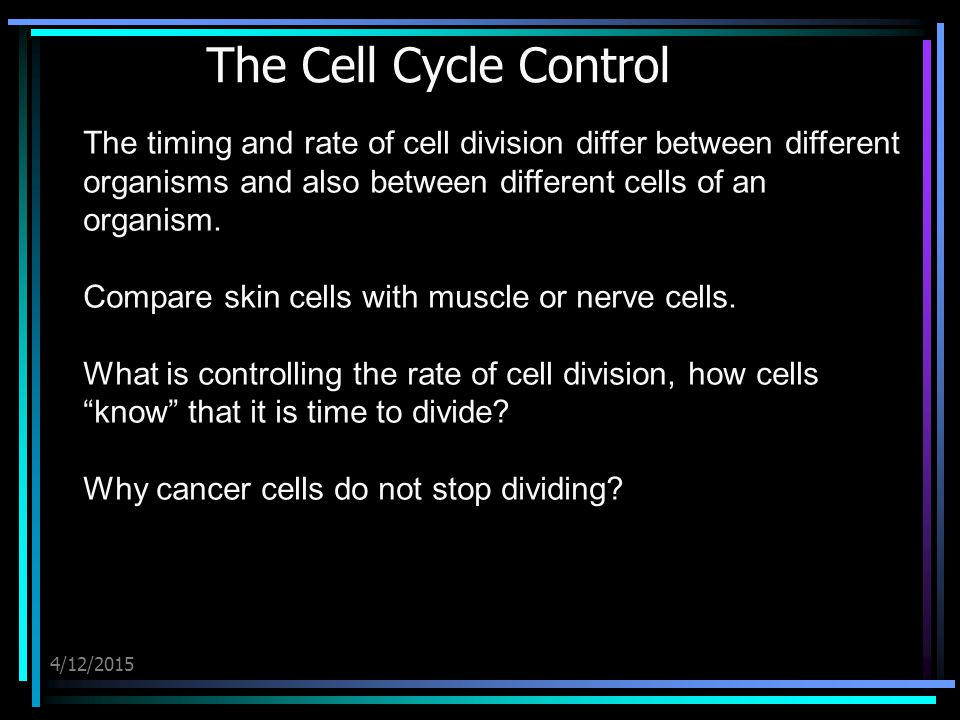 4/12/2015 The Cell Cycle Control The timing and rate of cell division differ between different organisms and also between different cells of an organism.