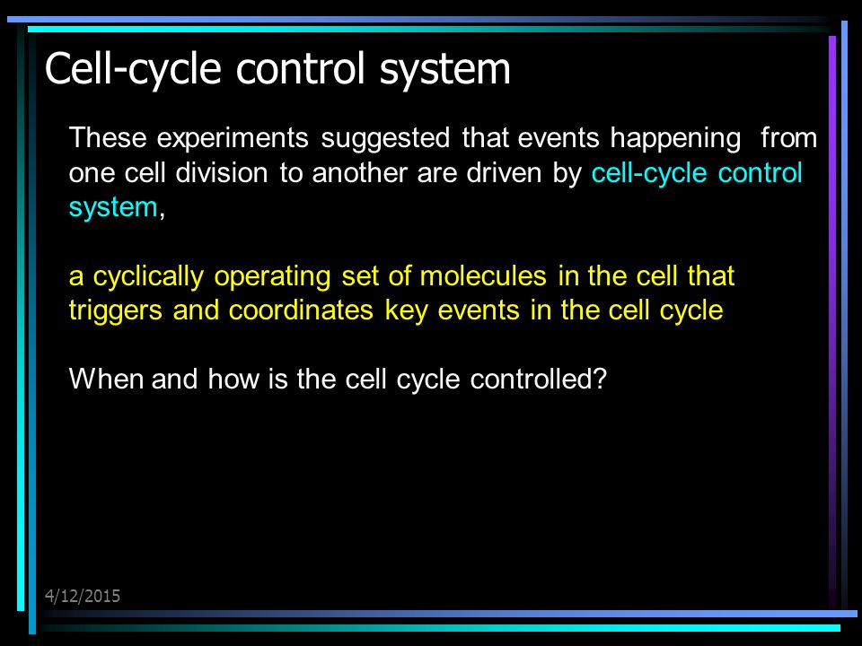 4/12/2015 Cell-cycle control system These experiments suggested that events happening from one cell division to another are driven by cell-cycle control system, a cyclically operating set of molecules in the cell that triggers and coordinates key events in the cell cycle When and how is the cell cycle controlled