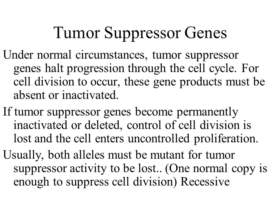 Tumor Suppressor Genes Under normal circumstances, tumor suppressor genes halt progression through the cell cycle.